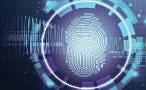 امنیت سایت چیست؟
